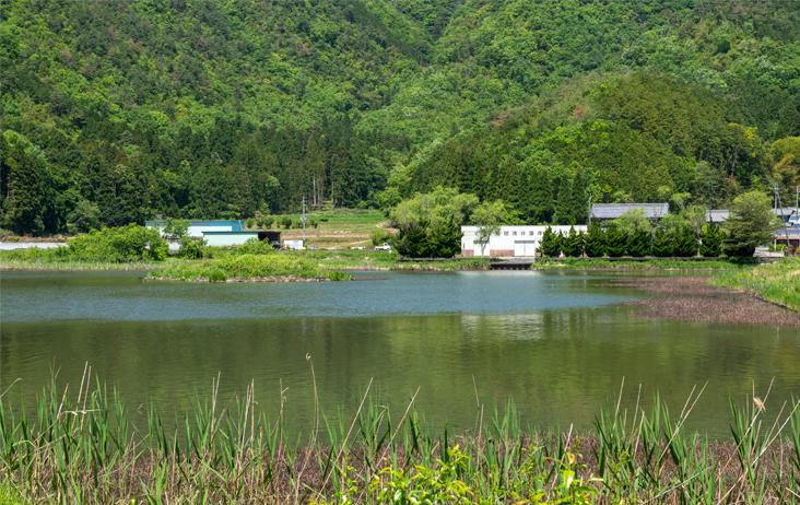 西池と艇庫